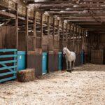 paardenstal bodembedekking