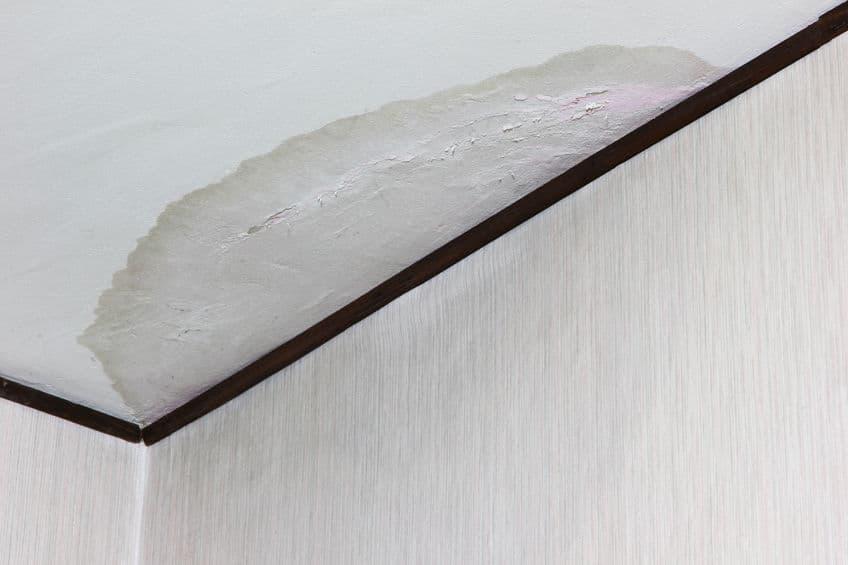vochtvlekken plafond